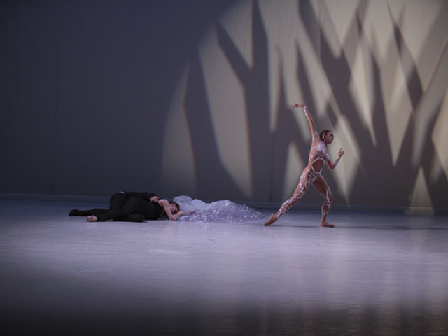 Les Ballets de Monte Carlo «La belle»